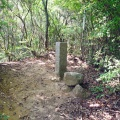 神戸市境界石No.82-98 黒岩尾根から神戸市中央区と灘区境を九十八号石柱まで進む。