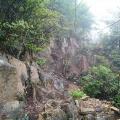霧に煙る行者尾根を登り、山寺尾根を下る。ケルンの脇に謎の祠。