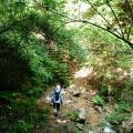 西国往還付替道 杣谷道から名場谷、森林植物園を抜け小部峠へ至る。