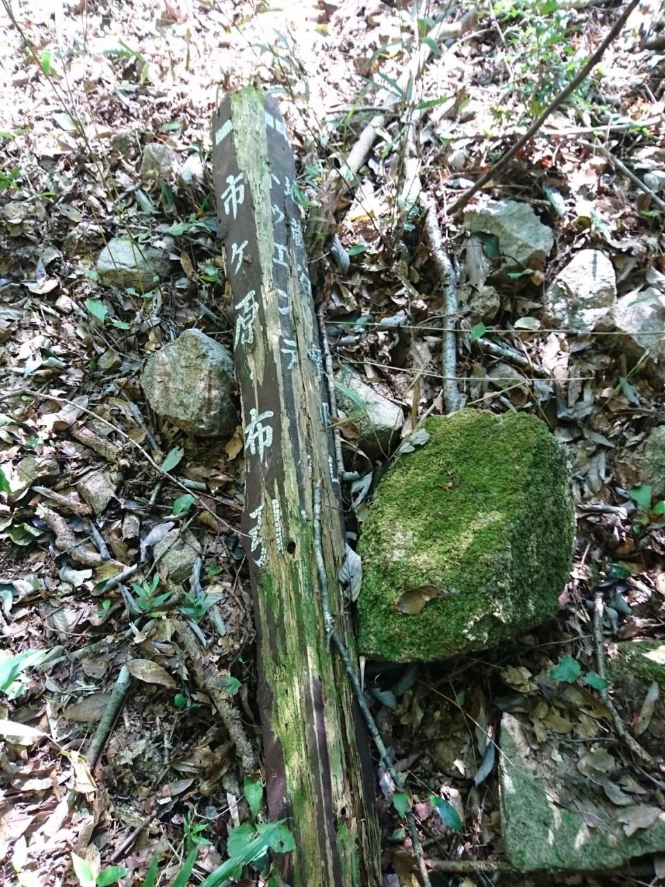 トゥエンティクロス @小橋を渡った先の北の茂み内