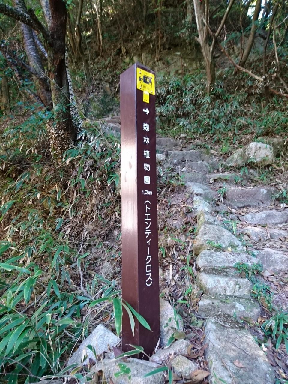 トエンティークロス @二十渉堰堤下流