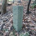 神戸市境界石No.72・75・77 平野谷西尾根から極楽谷経由で再度越まで。