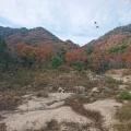 下見山行。杣谷道から摩耶東谷を歩く。