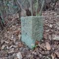 神戸市境界石No.85 黒岩尾根から派生する尾根にて。どうやら現在の境界とは違うみたい。